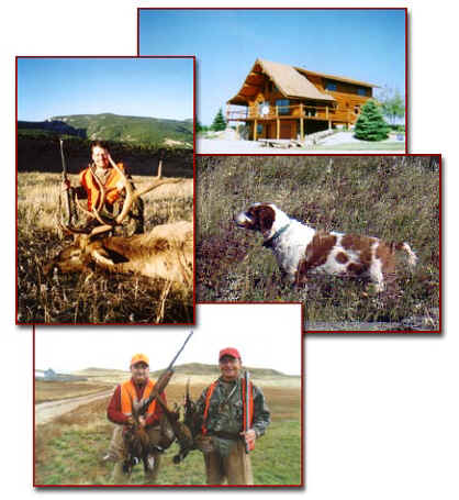 Montana Hunting at it's best!